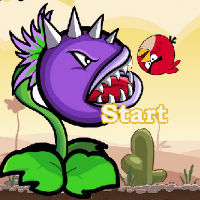 Обмани цветок Angry Birds